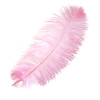 "Ostrich Wing Feathers 18-24"" Premium Qlty 1/2 Lb Baby Pink"